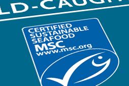 5.6_6_SeafoodSustainability
