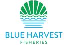 BlueHarvestFisheries_logo 1