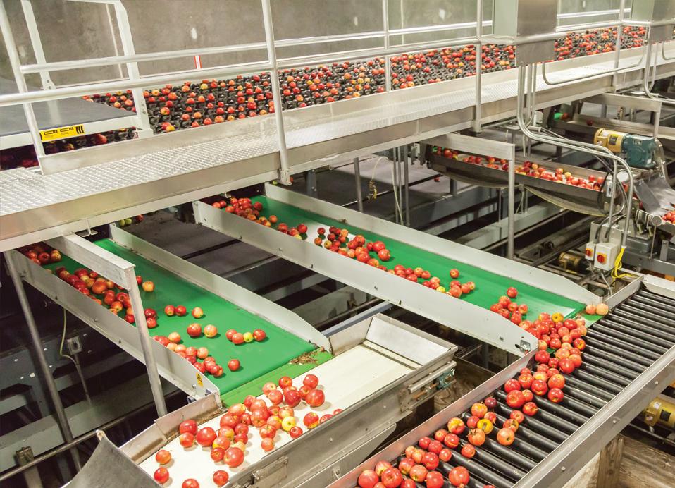 produce-pillar-software-v2